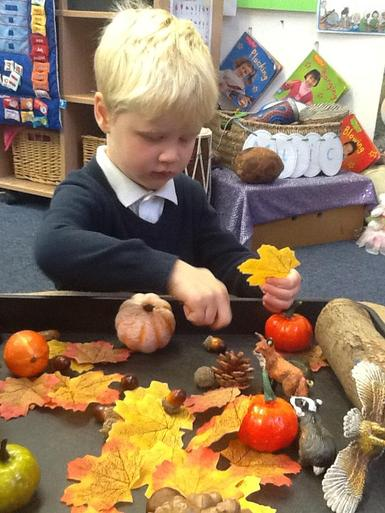 Looking at Autumn objects and Animals