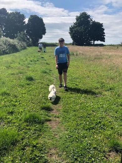 Ethan dog walking