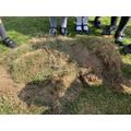 Dug earth