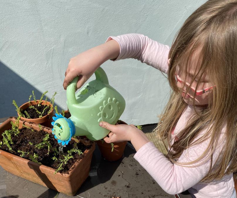 An attentive gardener!