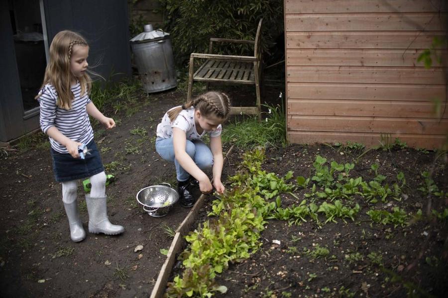 Sisters planting away!