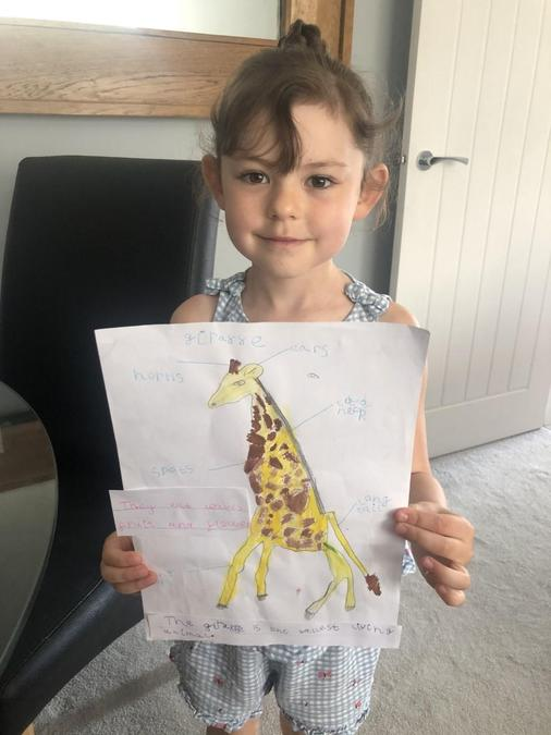 You should be very proud of your poster Evie!