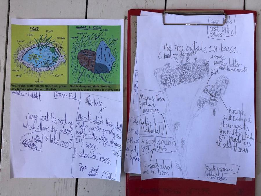 Interesting observations on habitats Nuala.
