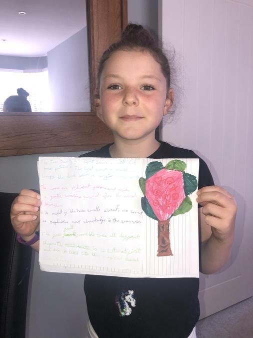 'Vibrant green leaves' - great noun phrase Ruby.