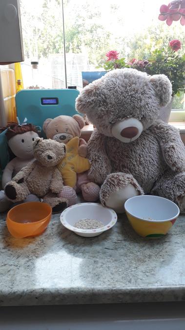 Leo, you found the 3 Bears!