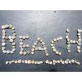 Cam's Beach Creation