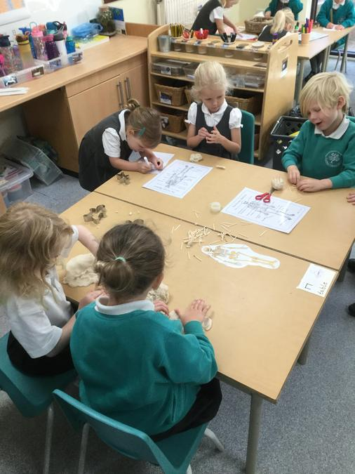 Using the playdough and wooden sticks to explore the importance of a skeleton!