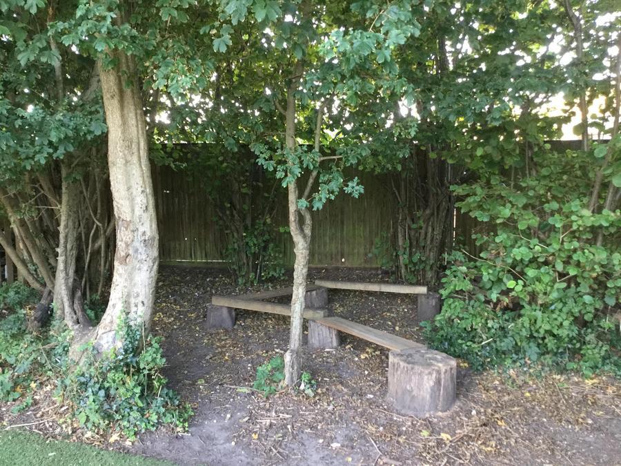 Walk, skip, climb and jump through the Woodland Walk
