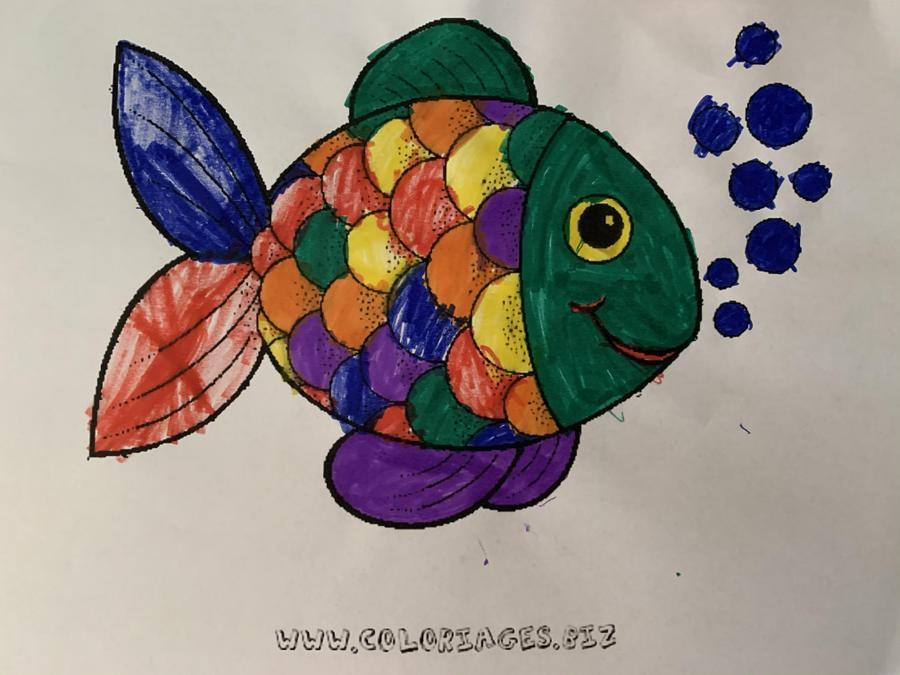 Lovely colouring Willow.
