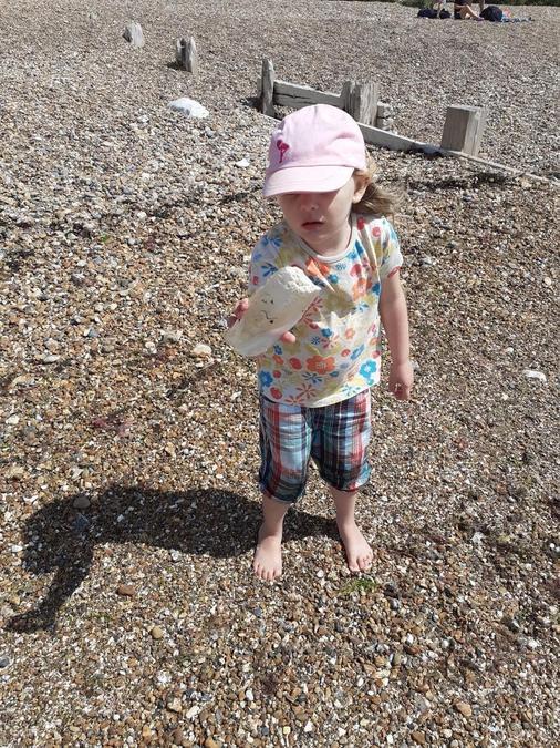 Exploring cuttlefish bones on the beach!