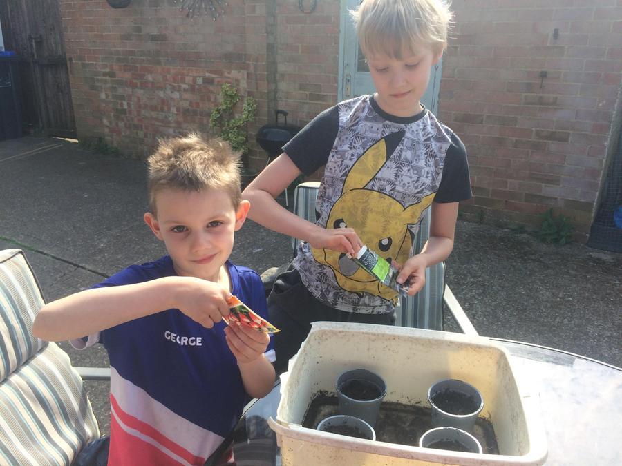 William and George enjoying planting
