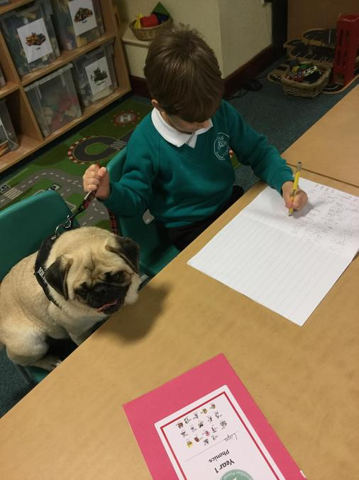 I helped with writing! (NOT!)
