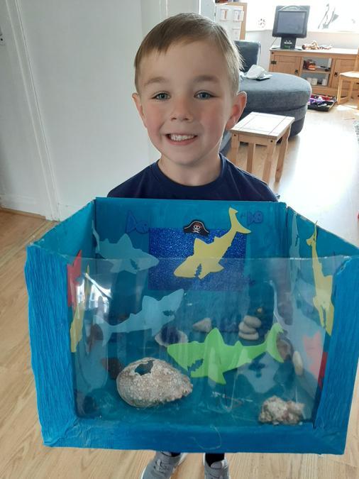 Wow! Great fish tank!