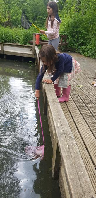 How exciting to find tadpoles & newts Ava!