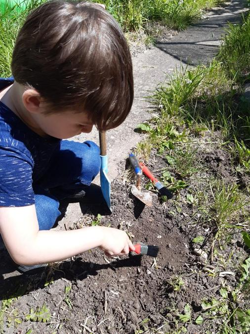 Searching for dinosaur bones, how exciting Drew!