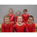 Year 3 & 4 Gym Team