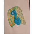 Mia drew this lovely picture of a peacock!