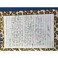 Here is Harry's fantastic writing!