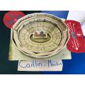 Caitlin's marvellous project!