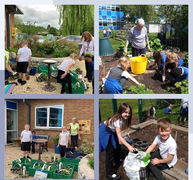 Year 2 Gardening Club
