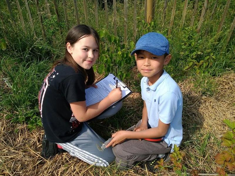 Imogen and Lucas recording data on young trees