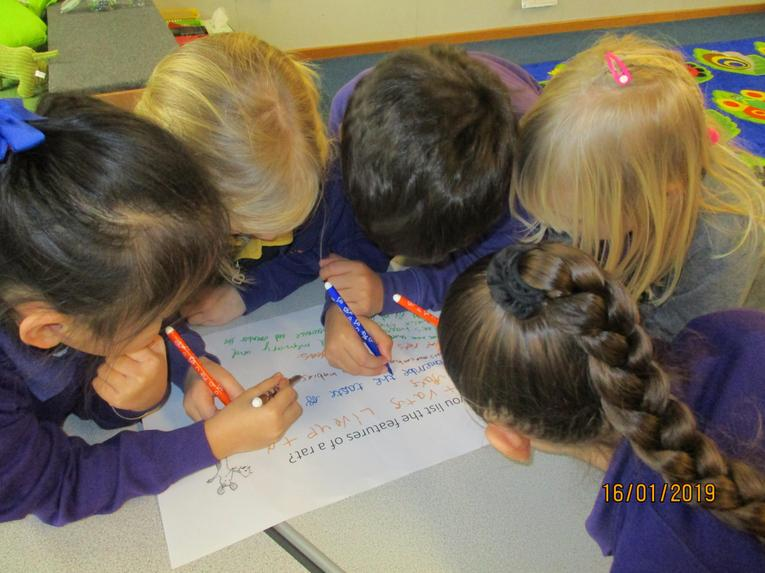 collaboration - working together to generate ideas