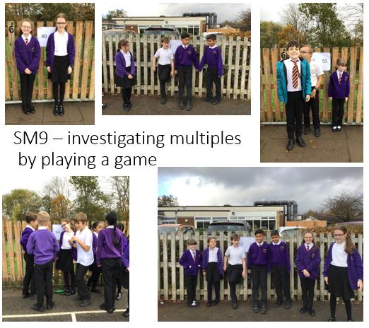 SM9 Investigating multiples