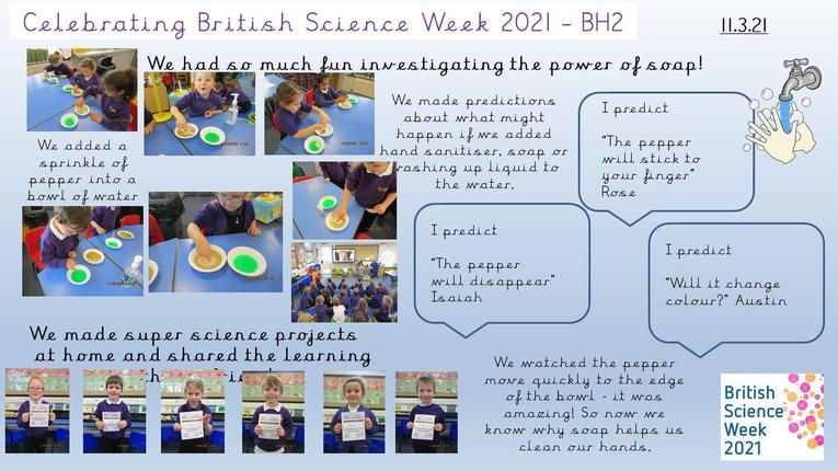 BH2 Capturing our Vision Spring 2