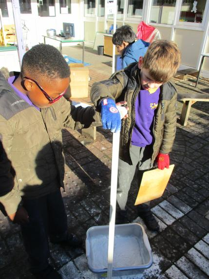 noticing - carrying out a science investigation