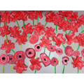 Last week we made poppies in school
