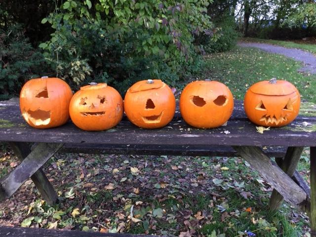 A pumpkin crew of scary faces!