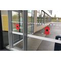 We decorated Curie with Poppies