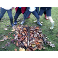 Natural anger collages on Outdoor Classroom day