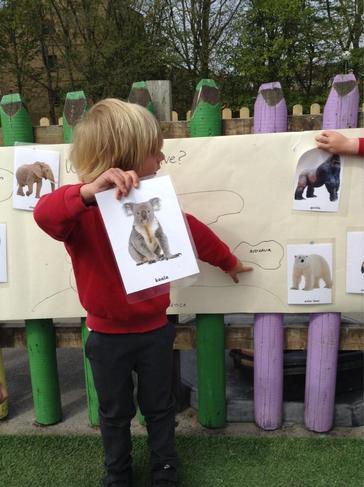 We were thinking about where animals originate.