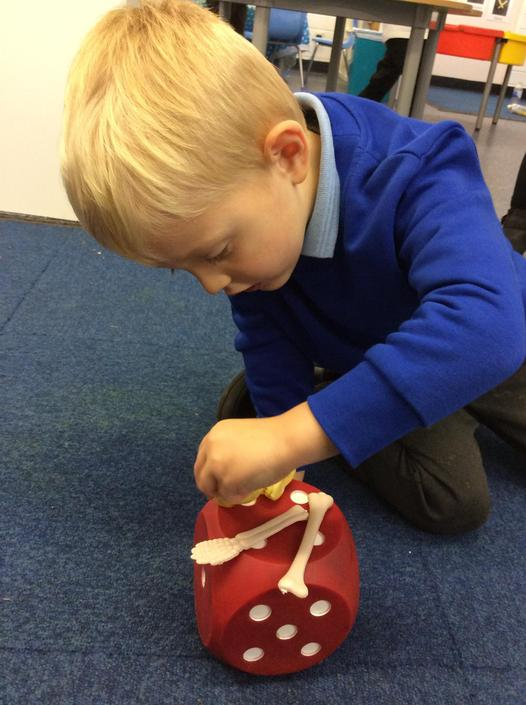 Maths time  -bone counting