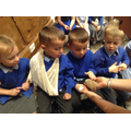Meeting the tenrec