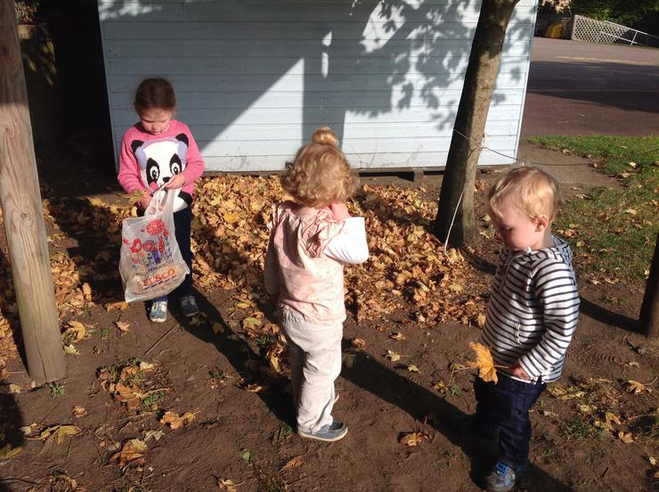 The children gather their own leaves