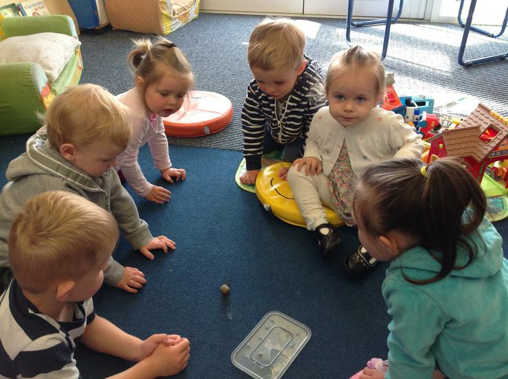 William brings in a real snail to observe