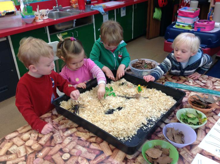 The children make a home out of sawdust
