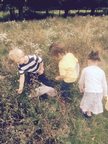 The children gathered natural resourses