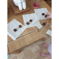Olivia has been dividing the Brownies into thirds