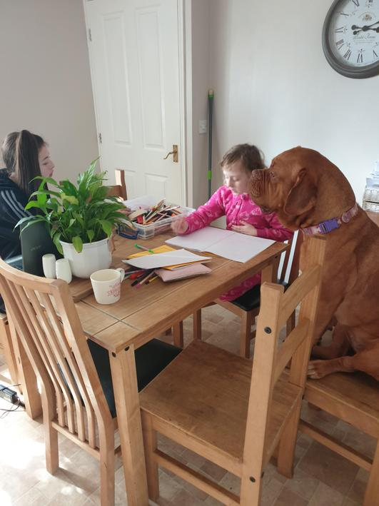 Olivia loves teaching her dog about time!