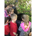 Looking at the compost and growing bins