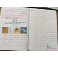 Year 6 - Exploring adaptation and how this leads to evolution