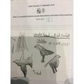 Year 6 - Sketching skills
