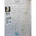 Year 6 - Learning about Charles Darwin's theory of evolution
