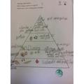 Year 3 - Exploring how we gain energy through a balanced diet