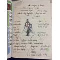 Year 2 - How a knight keeps healthy