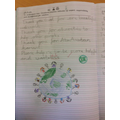 Year 3 - Christian beliefs about creation