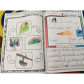 Reception - The life cycle of a butterfly and making rainbows!